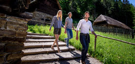 Almwanderungen in der Steiermark