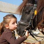 kind-pony-klein